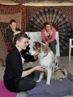 Atelier Massage Canin