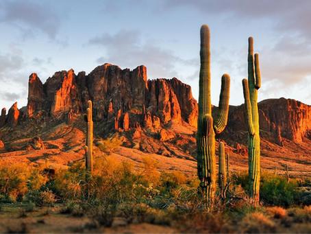 TESUP em todo o mundo! Nossa turbina eólica viajando para Concho, Arizona!