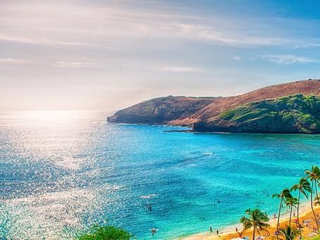 Nok en Tesup Wind Turbine Atlas 2.0 som flytter til Hilo, Hawaii!