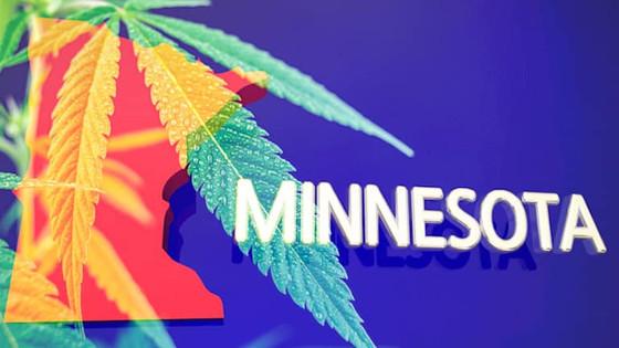 Minnesota Marijuana Bill Gets Historic First Hearing In Commerce Committee