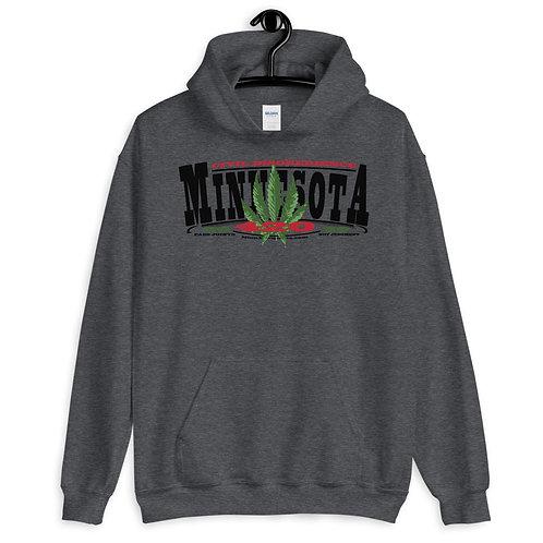 Minnesota 2020