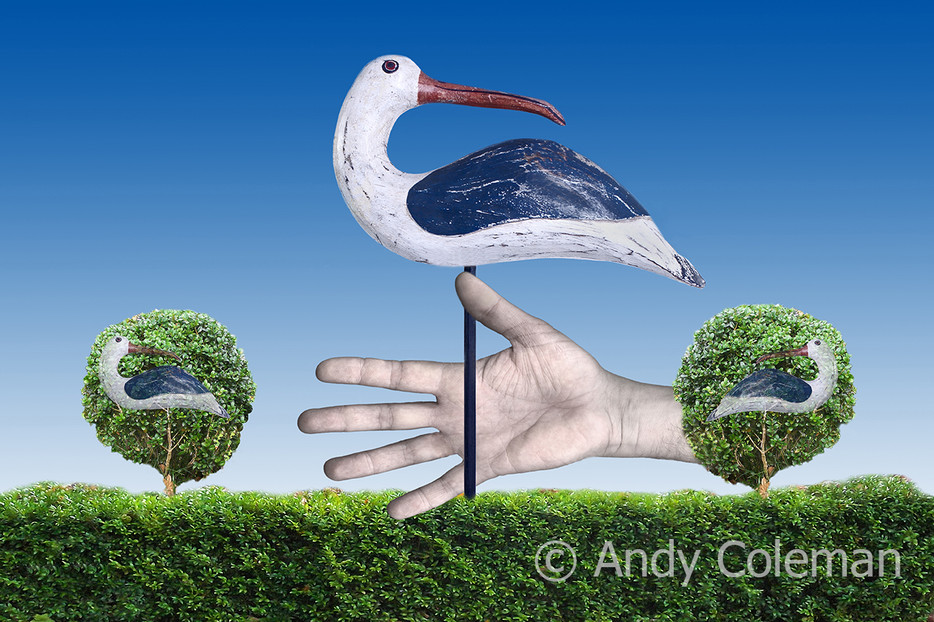 A visual representation of the old saying or proverb, a bird in the hand is worth two in the bush