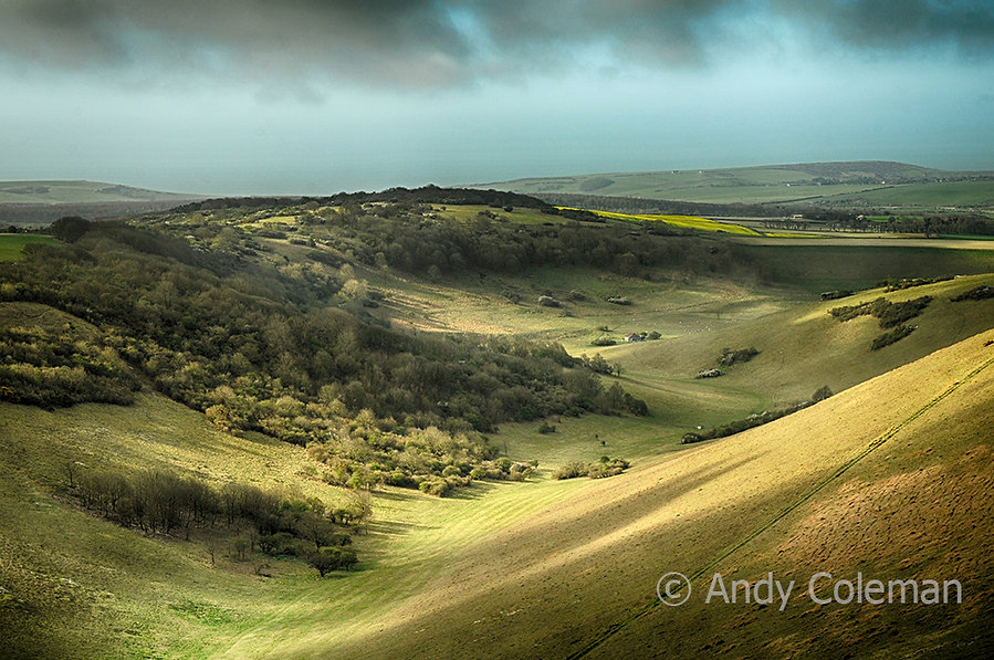 A valley in the South Downs National Park in East Sussex