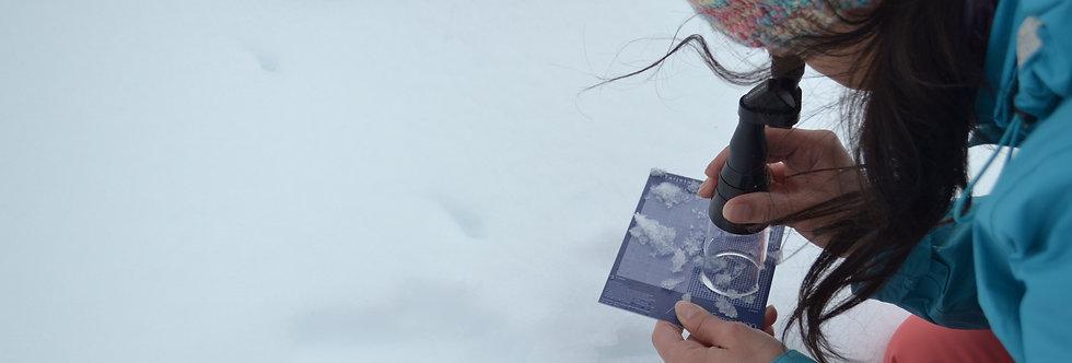 Kit de Estudio de Nieve