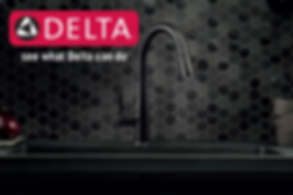 Delta kitchen faucet and sink