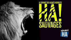 HA_Achats Sauvages.jpg