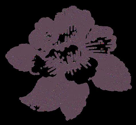 fleur_edited.png
