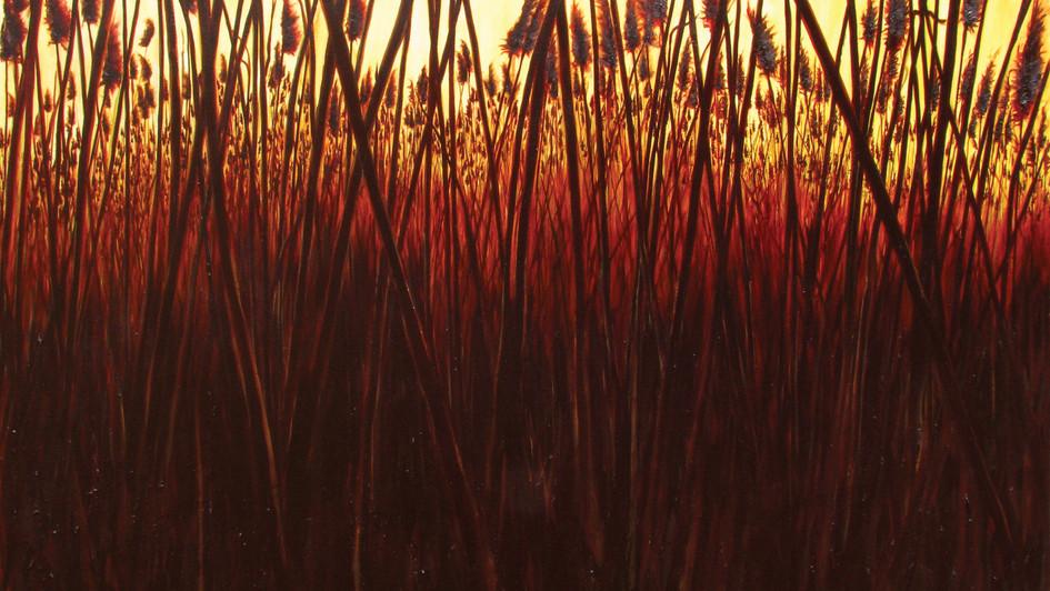 Matthew Green   Big Meadow