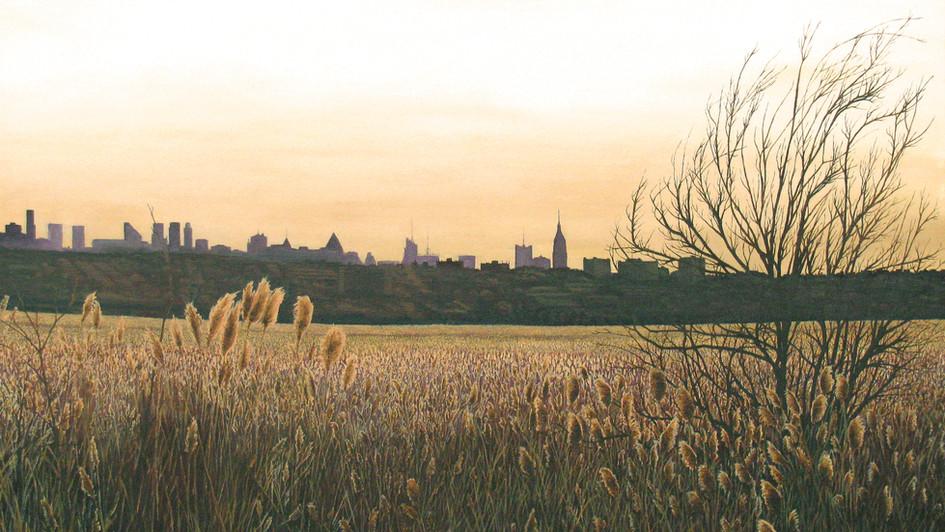 Matthew Green   Meadow Skyline