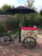 Vintage Tricycle with Flower Wall.jpg