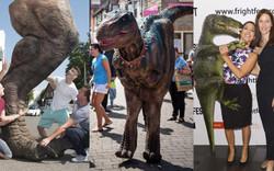 Dinosaur Hire