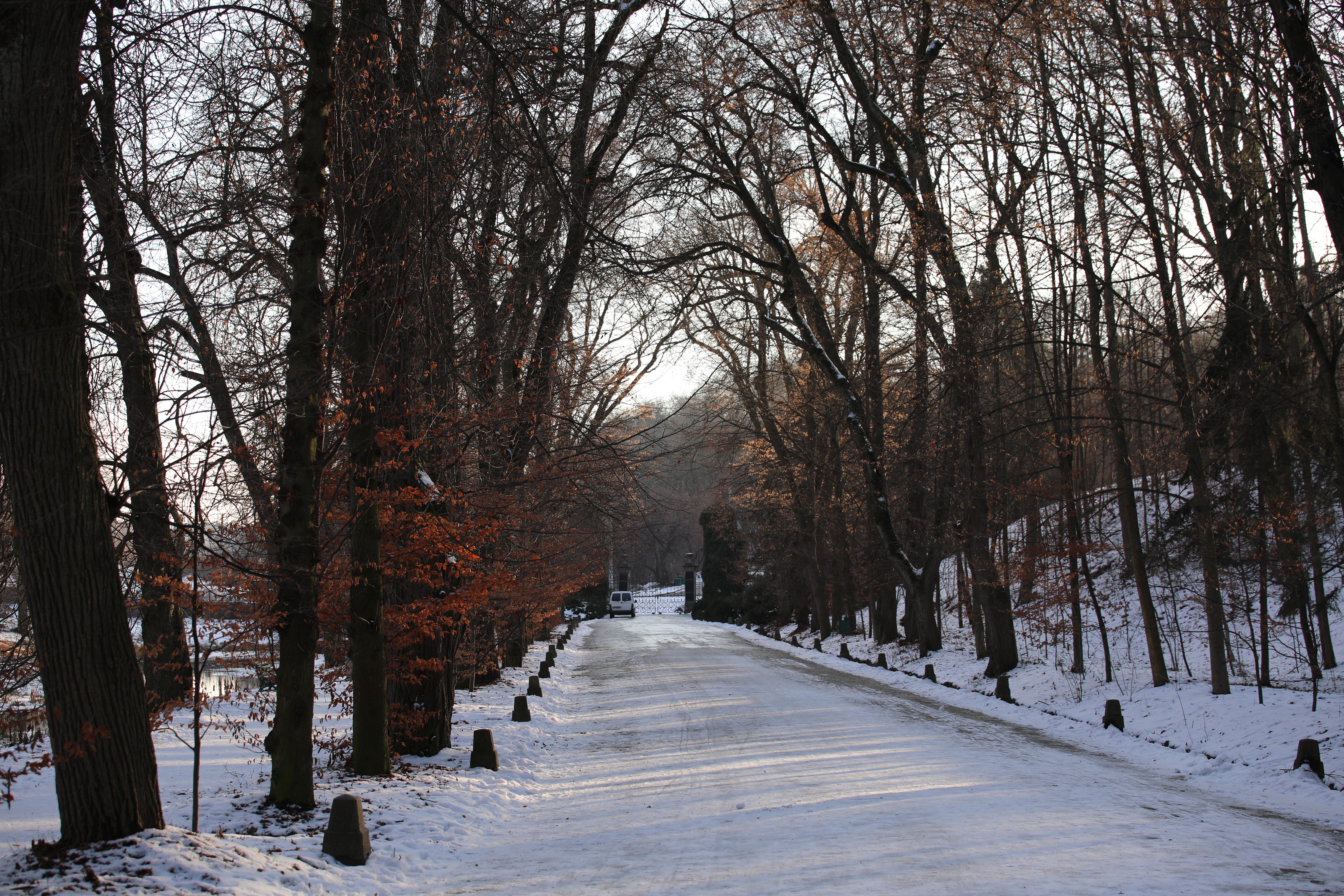 Parc Sofia Hiver