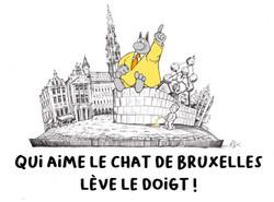 Bruxelles Chat
