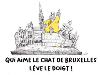 Le chat de Bruxelles
