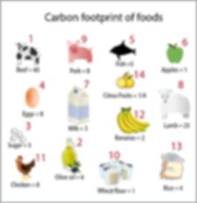 food foodprint.png