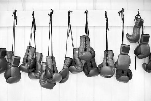 Boxing Gloves_edited.jpg