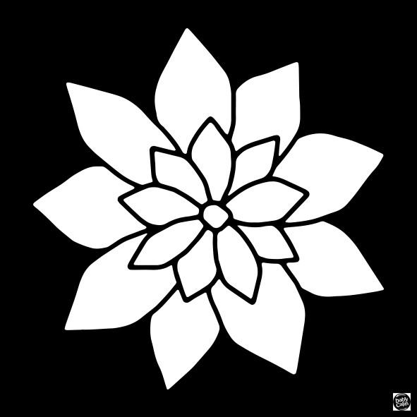 Carte contrastée bébé fleur