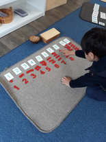 Card and counters Montessori.jpg