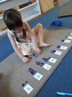 Card_Counters Montessori.jpg