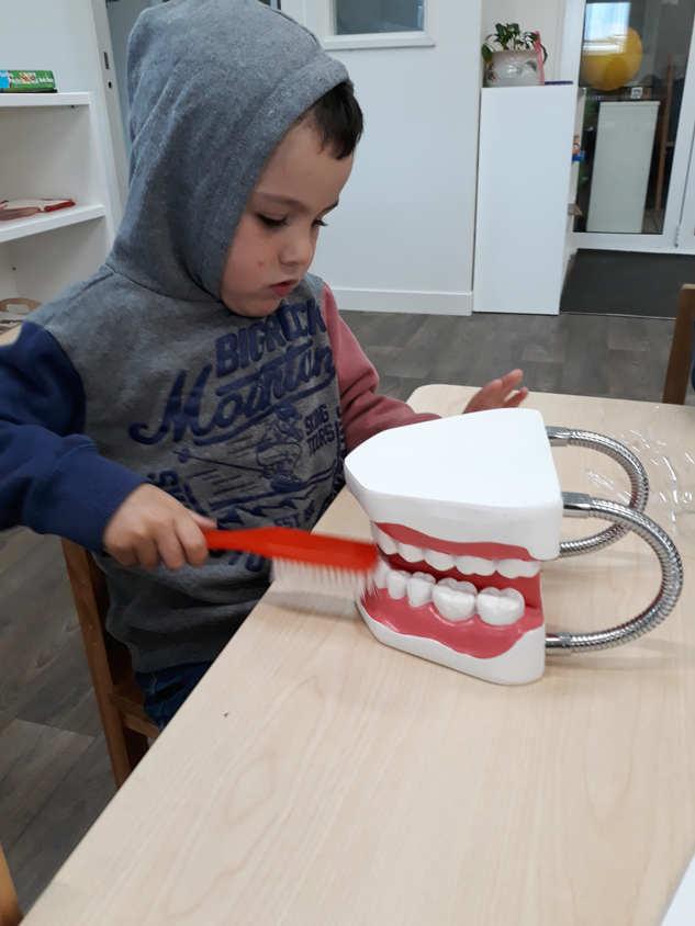 Toddler_brushing_Teeth_Dental.jpg