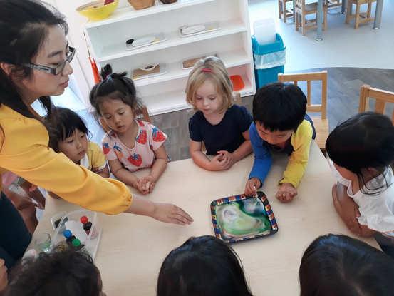 montessori science activities.jpg