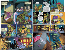 TMNT Animated#15 - IDW