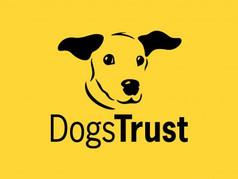 dogs trust.jpeg