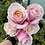 Thumbnail: Deluxe Wrapped Premium Novelty Roses- NON Red