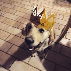 My la reine des rois