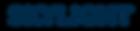 SKYLIGHT_logo.png