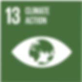 SDG13.png
