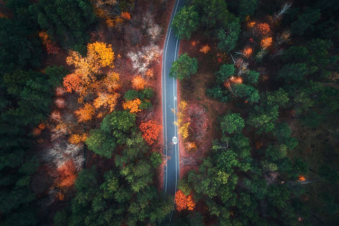 aerial-view-of-road-in-beautiful-autumn-