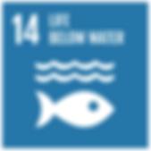 SDG14.png