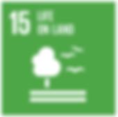 SDG15.png