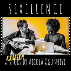 Sexcellence by Abiola Ogunbiyi