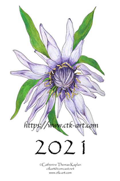 "2021 calendar 4"" x 6"" (postcard size)"