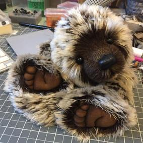 New bear in progress