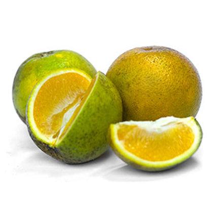 Naranja Valenciana x Libra