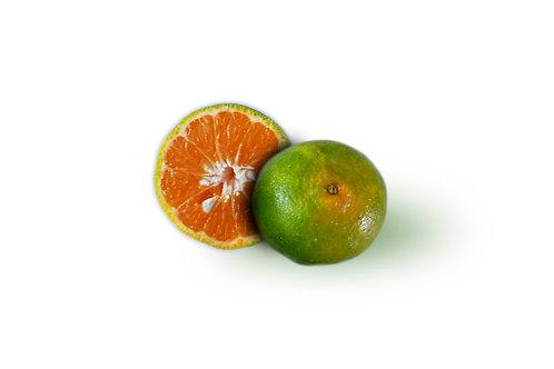 Mandarina Oneco x Libra