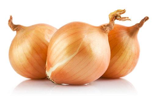 Cebolla Cabezona X Libra