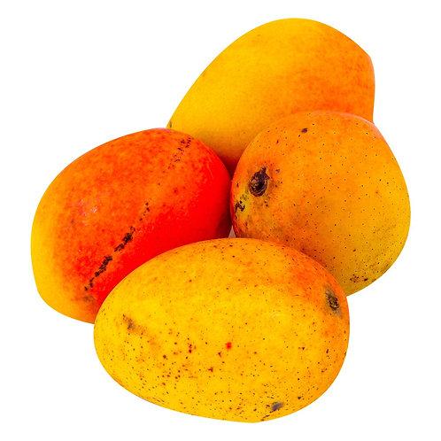 Mango de Azucar x Libra