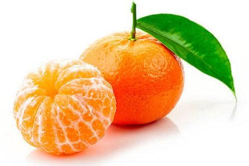 Mandarina Arrayana x Libra