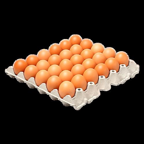 Huevos AA x 30