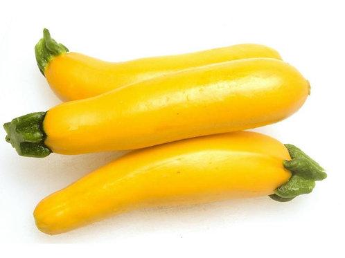 Zucchini Amarillo x Libra