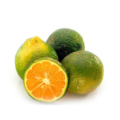 Limon Mandarino x Libra