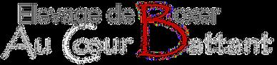 Logo sur fond noir 3.png