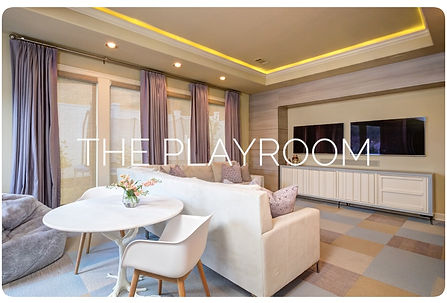 Residential Playroom