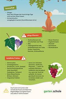 Hundefreundlicher-Garten-Infografik 3.jp