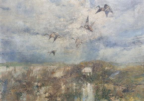 C4671, Kunstenaar onbekend, Opvliegende eenden