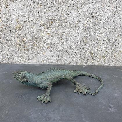 WS00053, Salamander, brons